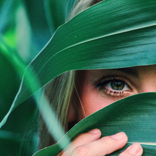 Dry Eye Syndrome in Women: By Dr. Tori Hudson, ND