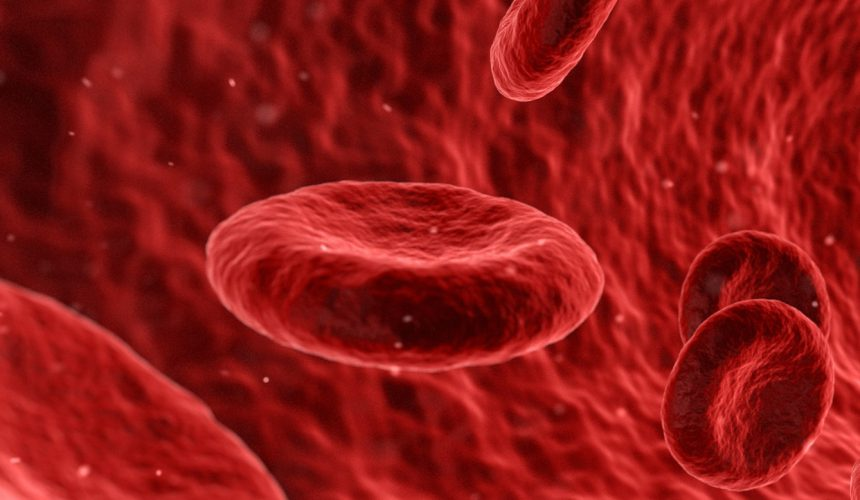 Laboratory Blood Markers to Track Health: By Dr Carissa Doherty
